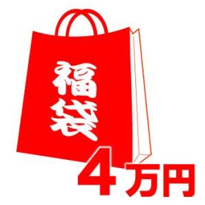 画像1: 【COACH】コーチの超お得レディース福袋〔4万円〕(送料無料)