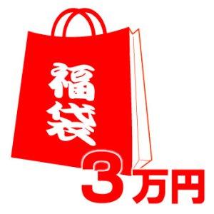 画像1: 【COACH】コーチの超お得レディース福袋〔3万円〕(送料無料)